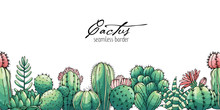 Poster With Seamless Ornament Hand Drawn Colored Lettering, Cacti And Succulents