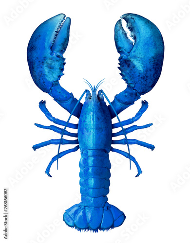 Blue Lobster Isolated Wallpaper Mural