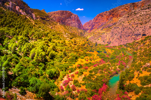 Road to the old beautiful and a very narrow bridge between two steep mountains over the canyon with mountain river at the bottom Wallpaper Mural