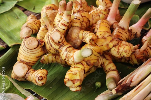 Fresh galangal for cooking in the market Wallpaper Mural