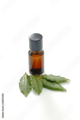 Canvas Prints Condiments Bay leaves aromatherapeutic oil