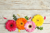 Flat lay composition with beautiful bright gerbera flowers on wooden background. Space for text