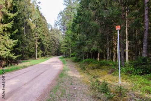 Fototapeta Pomarańczowy znak Green Velo w lesie z widokiem na drogę obraz