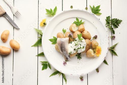 Fotografia, Obraz  Matjesfilet mit Pellkartoffeln Kartoffeln und Quark Kräuterquark Wildkräuter ess