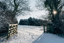 Open Gate And Snow Covered Fie...
