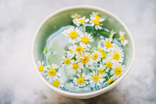 Daisy Flowers In A Bowl