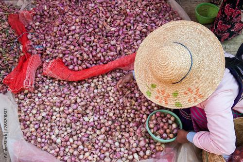 Garlic seller in a local market, Myanmar - Buy this stock