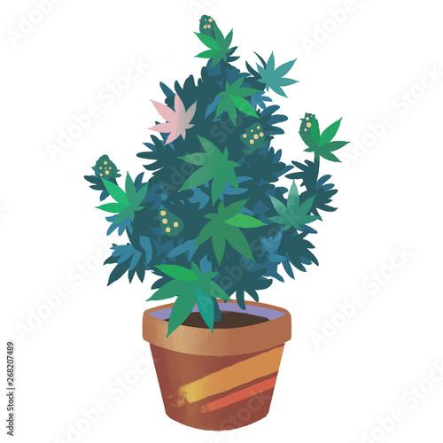 Cuadros en Lienzo Cute colourful marijuana bush in a primitivism style or a style of children's bo