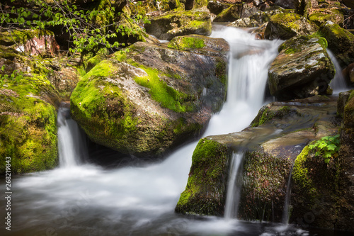 Foto Cascades of a mountain creek falling down the wet, green moss covered rocks in t