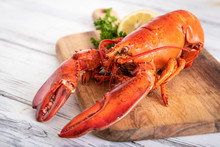Whole Boiled Lobster Image