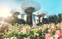 Singapur, Asia.