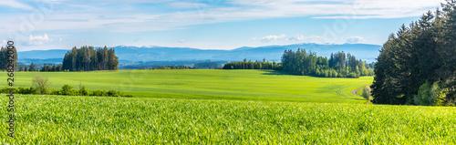 Photo  Green hilly landscape with Giant Mountains, Czech: Krkonose, on skyline, Czech Republic