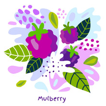 Fresh Mulberry Berry Berries Fruits Juice Splash Organic Food Juicy Mulberries Splatter On Abstract Background Vector Hand Drawn Illustrations