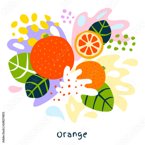 Fresh orange tropical exotic citrus fruits juice splash organic food juicy splatter oranges on abstract background vector hand drawn illustrations - 268274853