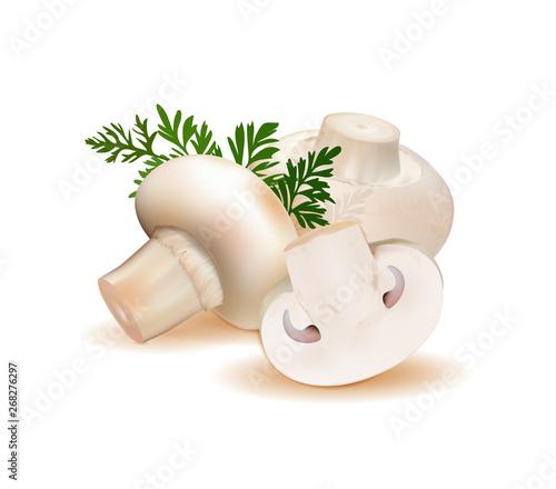 Fotografie, Obraz  champignon mushrooms isolated on white background