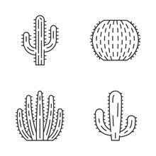 Wild Cactus Linear Icons Set