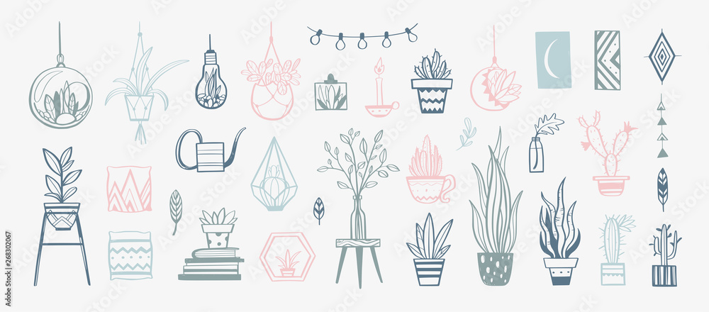Fototapeta Cozy interior decor Vector elements . Hand drawn house plants and decorations for home