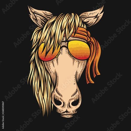 horse eyeglasses bandana vector illustration