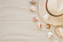 Different Sea Shells With Stra...