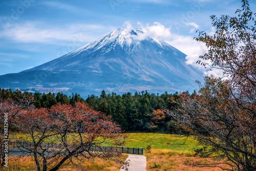 Mt. Fuji on blue sky background with autumn foliage at daytime in Fujikawaguchiko, Japan.