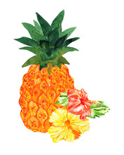 Juicy Watercolor Pineapple And Flowers Of Yellow And Red Hibiscus, Isolated On White. Hawaiian Holiday Aloha.
