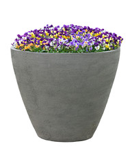Large Planter With Flowers Iso...