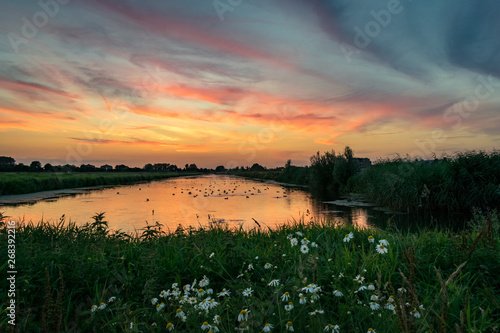 Wildflowers and beautiful colors in the sky over a lake in Holland Canvas Print