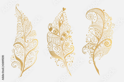 La pose en embrasure Style Boho Set of Golden Vector Design Feathers