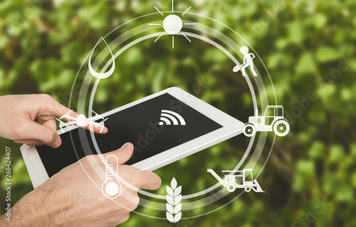 Smart farming, man with digital tablet in field Canvas Print