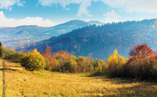 Poster Melon sunny autumn morning in countryside. fog in the distant valley. trees in fall foliage on the hillside. mountain range in the distance. bright weather with clouds on the sky