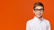 Portrait Of Cute School Boy In...