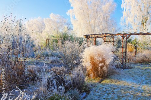Fotografiet Garten im Winter - garden in winter with hoarfrost on a cold day