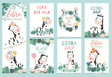 Collection Of Zebra Party Set ...