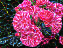 Beautiful Abstract Fractal Large Pink Flower