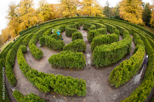 Cadres-photo bureau Vert chaux Wide angle view of a hedge maze in a park.