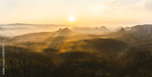Foto auf Gartenposter Beige Foggy forest during sunrise in Saxon Switzerland