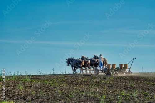 plakat Amish Farmer Planting