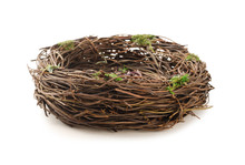 Studio Shot Of An Empty Bird Nest