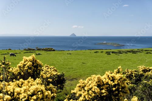 Alisa Craig mountain from grassy hill in Kildonan, Isle of Arran, Scotland Wallpaper Mural