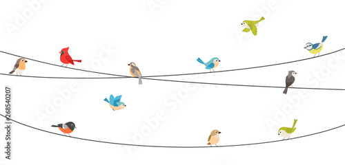 Colorful birds sitting on wire isolated on white Canvas Print