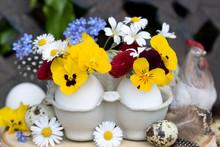 Osterdekoration Mit Blumen In Eierschalen