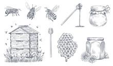 Honey Bees Engraving. Hand Drawn Beekeeping, Vintage Honey Farm And Honeyed Bee Pollen Vector Illustration Set