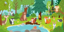 Cartoon Forest Animals. Wild Bear, Funny Squirrel And Cute Birds On Forests Trees Kids Vector Background Illustration