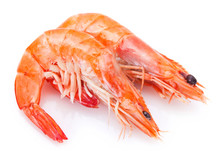 Cooked Shrimp On White Background