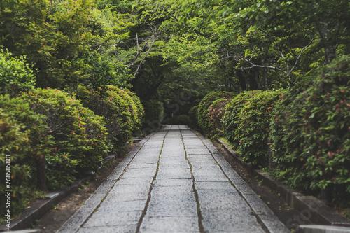 京都の石畳