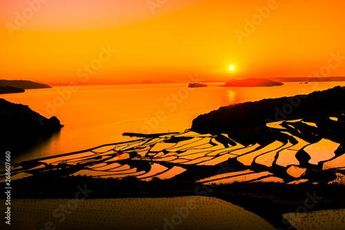 Keuken foto achterwand Oranje eclat Doya Tanada, sunset on the rice field, kyushu, japan