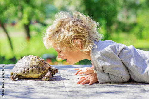 Fotografie, Obraz lovely boy with turtle