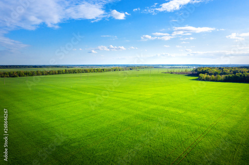 Foto auf AluDibond Gras Green meadow and blue sky from above. Summer field on sunny day aerial view. Agriculture