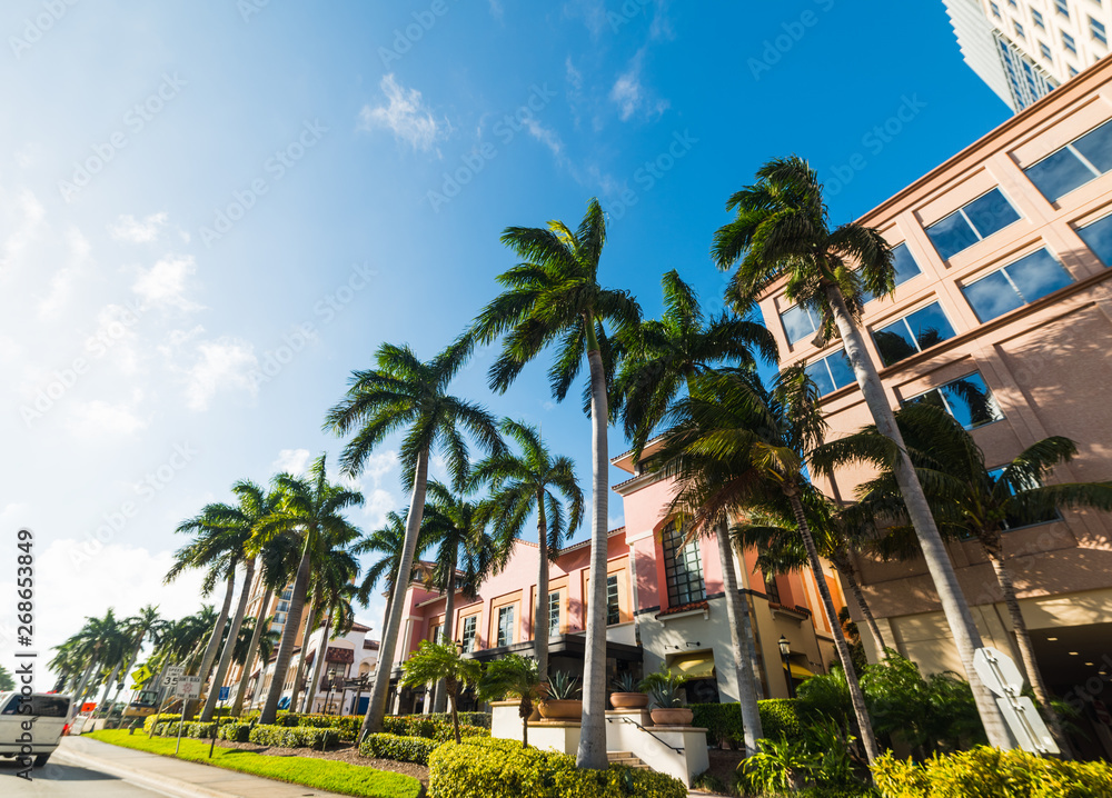 Fototapeta Palm trees and elegant buildings in West Palm Beach