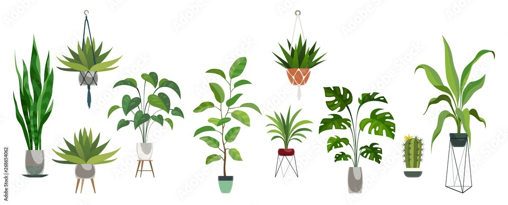 Fototapety, obrazy: Pot plant set. Plants plastic decorative container and hanging styling indoor basket for potting tree vector collection